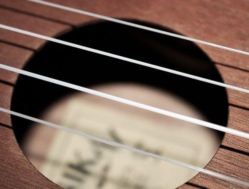 composition-ukulele