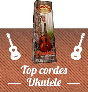 achat ukulele débutant