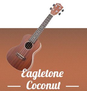 Acheter son premier ukul l d butant tab ukulele les meilleurs outils pour - Acheter son premier logement ...