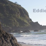 rise-Eddie-Vedder-ukulele