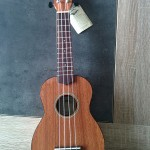 wiki-ukulele-debutant