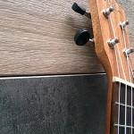 wiki-ukulele-debutant-3