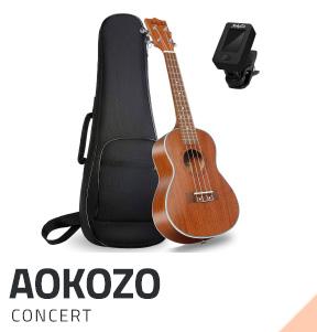 AoKoZo-concert-ukulele