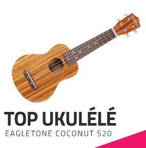 ukulele-debutant-top-achat