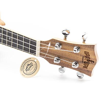 ukulele-03