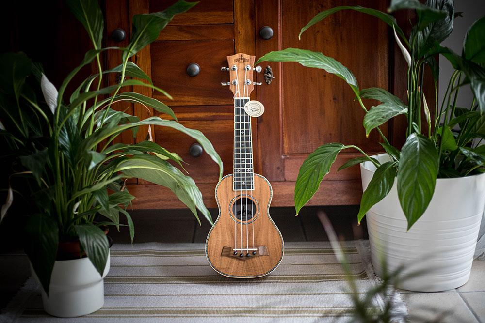 ukulele-05